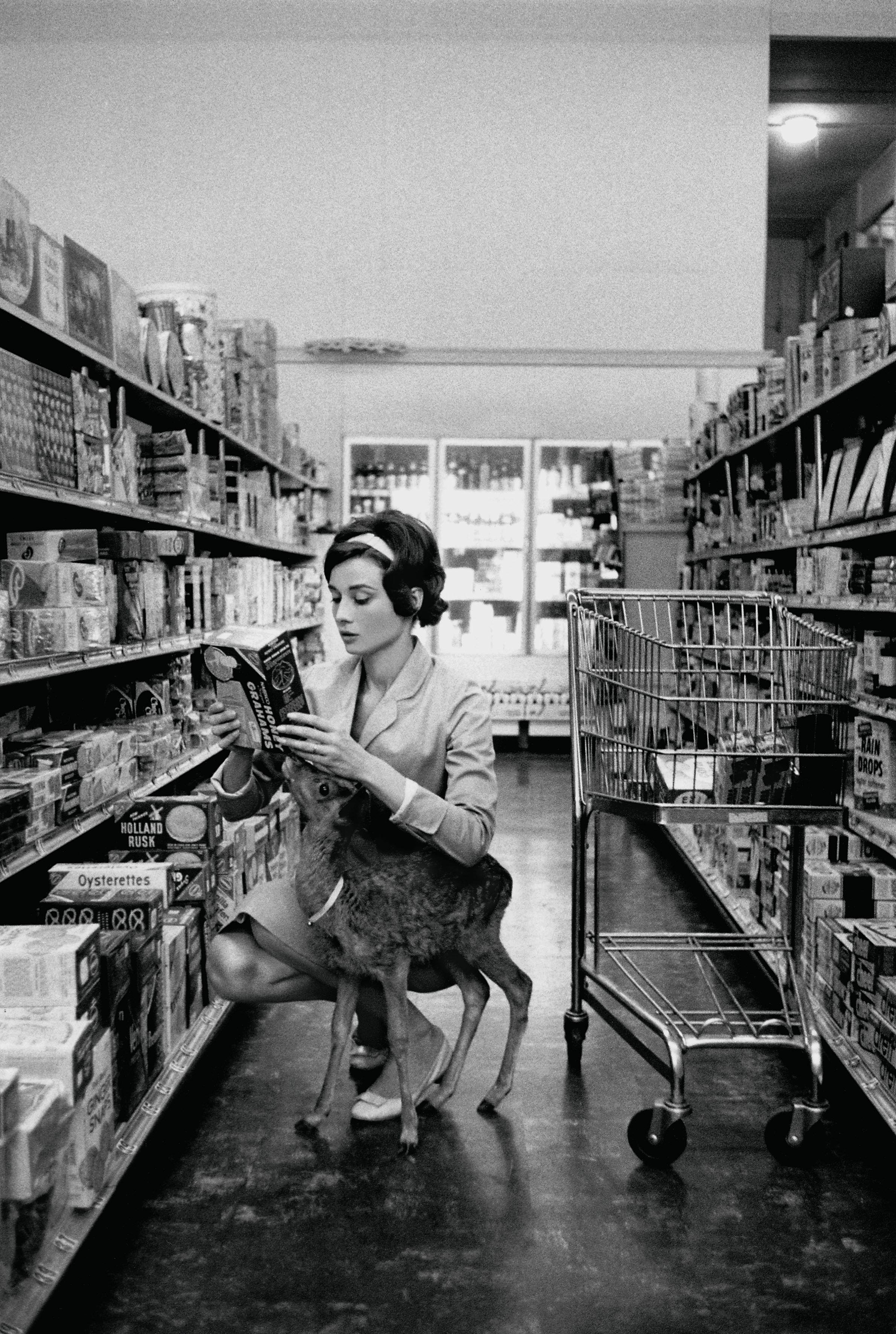 audrey-hepburn's-deer-1958